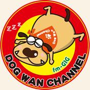 DOG WAN CHANNEL